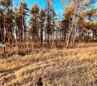 Photo 5: Over 1 acre lots in Hudson Bay: Lot/Land for sale : MLS®# SK850476