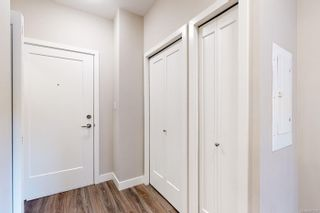 Photo 23: 204 1018 Inverness Rd in : SE Quadra Condo for sale (Saanich East)  : MLS®# 861623