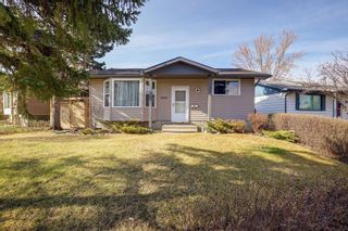 Photo 31: 4115 DOVERBROOK Road SE in Calgary: Dover Detached for sale : MLS®# C4295946