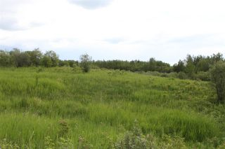 Photo 3: RR 35A Twp Rd 553: Rural Lac Ste. Anne County Rural Land/Vacant Lot for sale : MLS®# E4203889