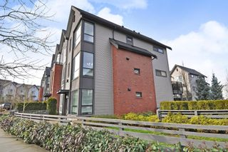 """Photo 21: 32 2325 RANGER Lane in Port Coquitlam: Riverwood Townhouse for sale in """"FREEMONT BLUE"""" : MLS®# R2431249"""