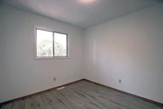 Photo 13:  in Edmonton: Zone 29 House for sale : MLS®# E4262869