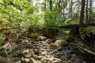 Photo 10: LOT 1 3060 SUNNYSIDE Road in Port Moody: Anmore Land for sale : MLS®# R2603429