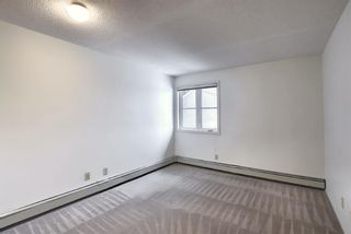 Photo 17: 2031 Edenwold Heights NW in Calgary: Edgemont Apartment for sale : MLS®# A1066741