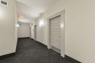 Photo 11: 235 503 Albany Way in Edmonton: Zone 27 Condo for sale : MLS®# E4211597