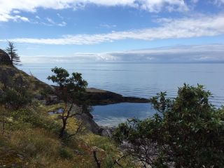 Photo 3: WEST TRAIL ISLAND in Halfmoon Bay: Sechelt District House  (Sunshine Coast)  : MLS®# R2498445