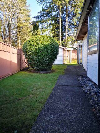 "Photo 32: 10618 GLENWOOD Drive in Surrey: Fraser Heights House for sale in ""Fraser Heights"" (North Surrey)  : MLS®# R2539009"