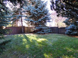 Photo 37: 6306 187 Street in Edmonton: Zone 20 House for sale : MLS®# E4266313