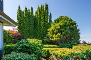 Photo 55: 781 Bowen Dr in : CR Willow Point House for sale (Campbell River)  : MLS®# 878395