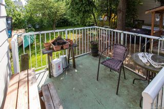Photo 19: 3151 Glasgow St in Victoria: Vi Mayfair House for sale : MLS®# 844623