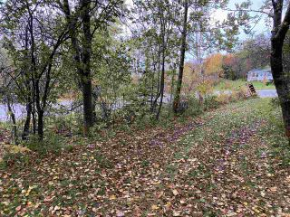 Photo 6: 331 Lower Road in Pictou Landing: 108-Rural Pictou County Residential for sale (Northern Region)  : MLS®# 202022551