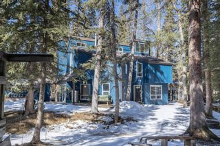 Photo 48: 35 Burntall Drive: Bragg Creek Detached for sale : MLS®# A1090777