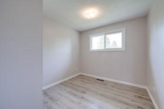 Photo 20: 10916 36A Avenue in Edmonton: Zone 16 House for sale : MLS®# E4246893
