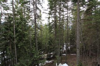 Photo 13: 2393 Vickers Trail in Anglemont: North Shuswap House for sale (Shuswap)  : MLS®# 10078378