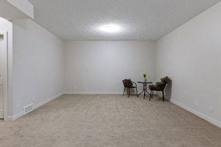 Photo 39: 453 Auburn Bay Drive SE in Calgary: Auburn Bay Detached for sale : MLS®# A1130235