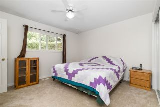 Photo 23: 3124 BABICH Street in Abbotsford: Central Abbotsford House for sale : MLS®# R2480951
