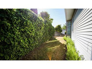 """Photo 10: 71 9012 WALNUT GROVE Drive in Langley: Walnut Grove Townhouse for sale in """"QUEEN ANNE GREEN"""" : MLS®# F1447003"""