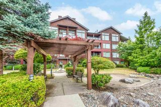 """Photo 38: 206 240 SALTER Street in New Westminster: Queensborough Condo for sale in """"Regatta by Aragon"""" : MLS®# R2602839"""