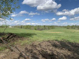 Photo 11: 53000 Range Road 73: Rural Parkland County Rural Land/Vacant Lot for sale : MLS®# E4202767