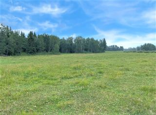 Main Photo: on Range Road 4-4: Rural Clearwater County Agriculture for sale : MLS®# A1132326