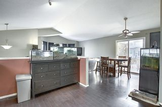 Photo 9: 163 Erin Meadow Green SE in Calgary: Erin Woods Detached for sale : MLS®# A1077161
