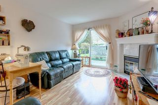 "Photo 9: 109 11578 225 Street in Maple Ridge: East Central Condo for sale in ""THE WILLOWS"" : MLS®# R2138956"