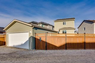 Photo 21: 115 SKYVIEW SPRINGS Gardens NE in Calgary: Skyview Ranch Detached for sale : MLS®# A1035316