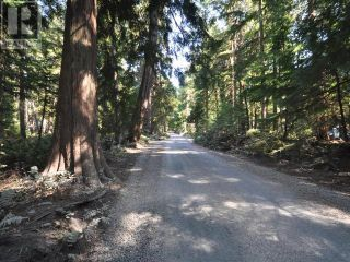 Photo 3: 1239/1241 VANCOUVER BLVD in Savary Island: Vacant Land for sale : MLS®# 16136