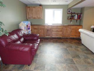 Photo 21: 5014 46 Street: Sedgewick House for sale : MLS®# E4244202
