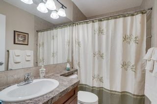 Photo 35: 160 Brightonstone Gardens SE in Calgary: New Brighton Detached for sale : MLS®# A1009065
