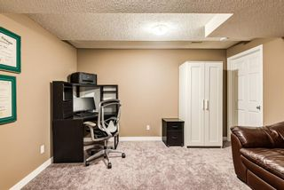 Photo 28: 53 Copperfield Court SE in Calgary: Copperfield Row/Townhouse for sale : MLS®# A1138050