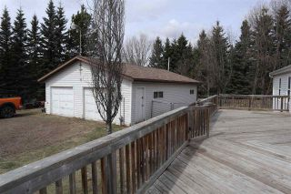 Photo 30: 4502 22 Street: Rural Wetaskiwin County House for sale : MLS®# E4241522