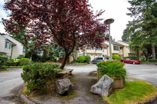 Photo 4: 8 9340 128 STREET in Surrey: Queen Mary Park Surrey Townhouse for sale : MLS®# R2319699