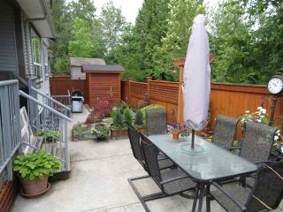Photo 3: 8144 211 STREET in Langley: Willoughby Heights House for sale : MLS®# R2093922