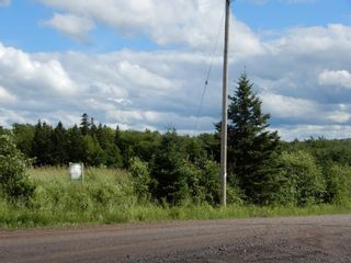 Photo 16: Lot 17 Second Division Road in Heathbell: 108-Rural Pictou County Vacant Land for sale (Northern Region)  : MLS®# 202116209