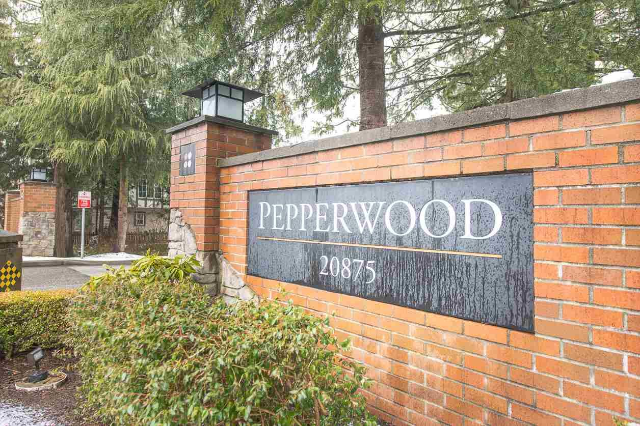 "Main Photo: 42 20875 80 Avenue in Langley: Willoughby Heights Townhouse for sale in ""PEPPERWOOD"" : MLS®# R2539819"