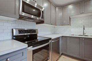 Photo 6: 228 27 Avenue NW in Calgary: Tuxedo Park Semi Detached for sale : MLS®# A1043141