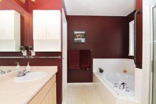 "Photo 10: 12012 205A Street in Maple Ridge: Northwest Maple Ridge House for sale in ""WEST MAPLE RIDGE"" : MLS®# R2361637"