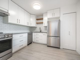 Photo 9: 411 1419 Stadacona Ave in : Vi Fernwood Condo for sale (Victoria)  : MLS®# 875954