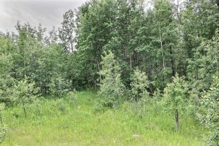 Photo 5: 33538 Rg RD 30: Rural Mountain View County Land for sale : MLS®# C4305650