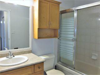Photo 21: 7118 178 Street in Edmonton: Zone 20 Townhouse for sale : MLS®# E4222101