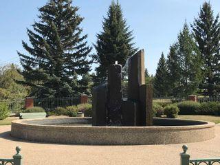 Photo 3: 317 WEBER Way in Edmonton: Zone 20 House for sale : MLS®# E4259256
