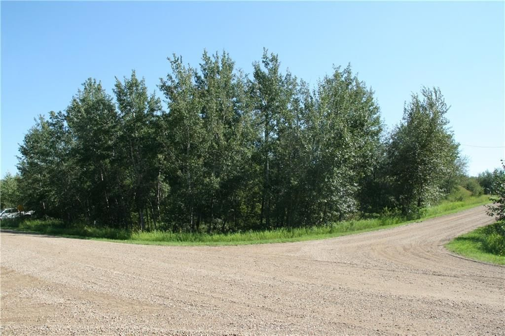 Main Photo: 7 Buffalo Drive in Rural Stettler No. 6, County of: Rural Stettler County Land for sale : MLS®# A1066074