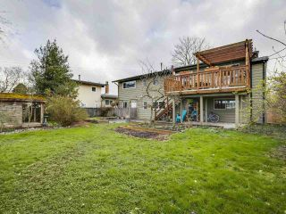 Photo 31: 4453 54A Street in Delta: Delta Manor House for sale (Ladner)  : MLS®# R2557286