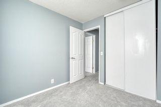Photo 31: 375 Falshire Way NE in Calgary: Falconridge Detached for sale : MLS®# A1089444
