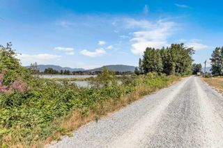 Photo 39: 17456 KENNEDY Road in Pitt Meadows: West Meadows House for sale : MLS®# R2614882