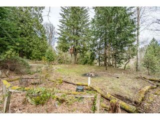 Photo 37: 6067 ROSS Road: Ryder Lake House for sale (Sardis)  : MLS®# R2562199