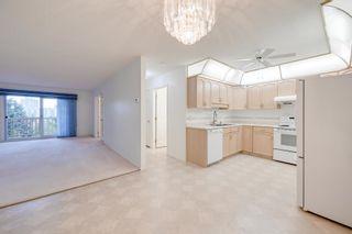 Photo 10: 401 10915 21 Avenue in Edmonton: Zone 16 Condo for sale : MLS®# E4249968