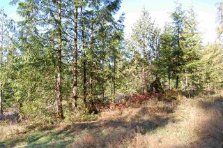 Photo 6: 9850 LINDSAY Terrace in Mission: Mission BC Land for sale : MLS®# R2331849