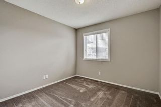Photo 28: 51 Skyview Springs Cove NE in Calgary: Skyview Ranch Detached for sale : MLS®# C4186074